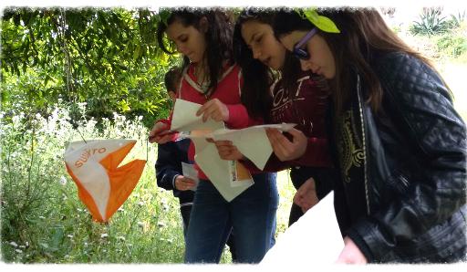 gite scolastiche juniorland sicilia pony