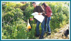 incentive aziendali sicila juniorland orienteering 3