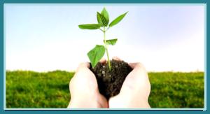 incentive aziendali sicila juniorland biologico