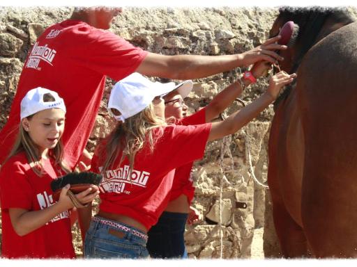 campi estivi sicilia juniorland equitazione scuderizzazione