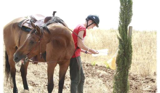 campi estivi palermo sicilia orienteering a cavallo avventura