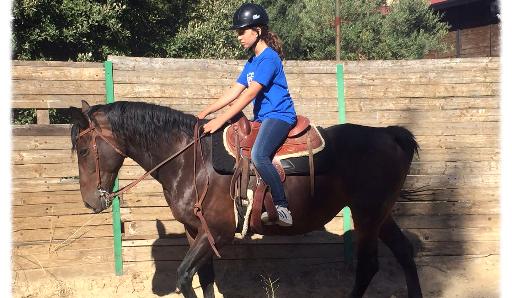 campi estivi palermo sicilia equitazione avventura