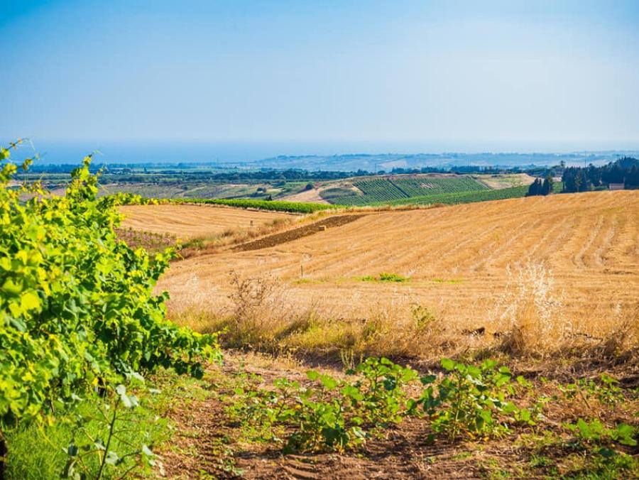 juniorland menfi tenuta Stoccatello Sicilia campi estivi
