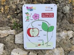 gite scolastiche 2021 juniorland Sicilia Menfi Tenuta Stoccatello