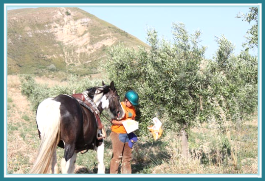 orienteering a cavallo junior land